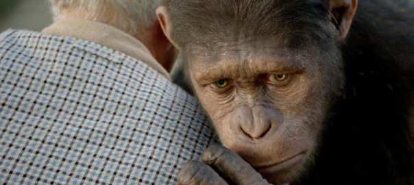 Rise-of-the-Planet-of-the-Apes-Stills-4