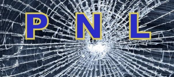 cercetat-penal-dupa-ce-a-spart-geamurile-unui-liceu-unor-case-si-unui-autobuz-3332