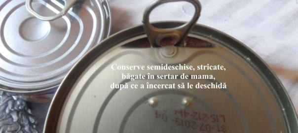 19-conserve-1024x576